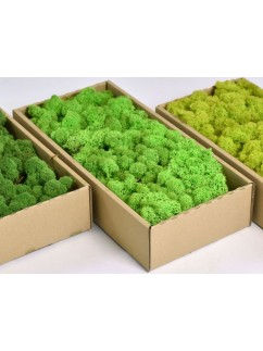Mech Světle zelený  0,5 kg