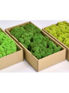 Mech Zelený  0,5 kg