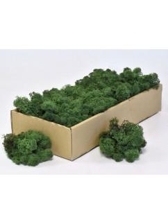 Mech tmavě zelený  0,5 kg