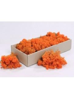 Mech Oranžový  0,5 kg