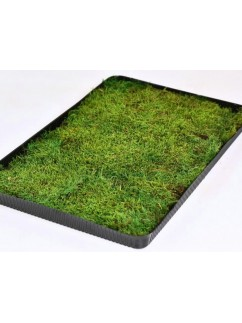 MECH Plochý světle zelený  0,2 m2